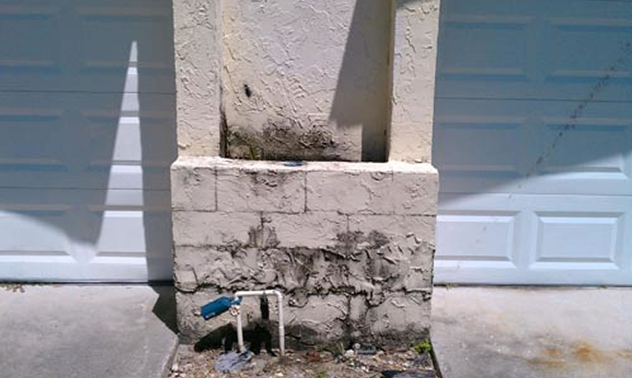 Professional Mold Inspection in Orlando, FL